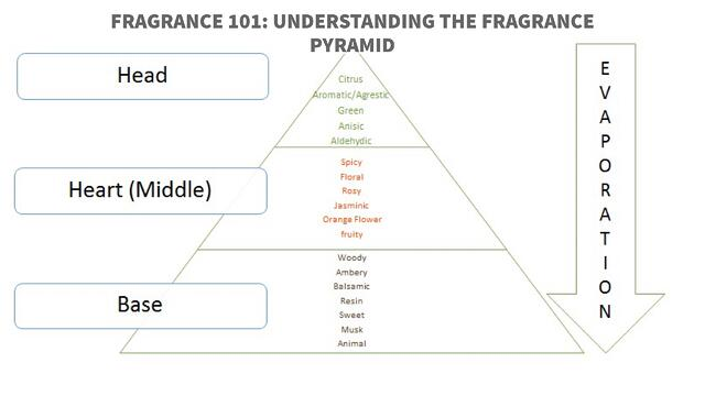 fragrance 101 understanding the fragrance pyramid