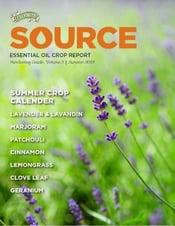 Source Summer Report