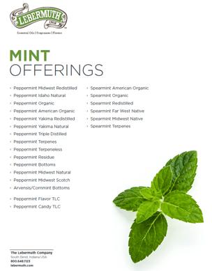 Lebermuth Mint Essential Oils