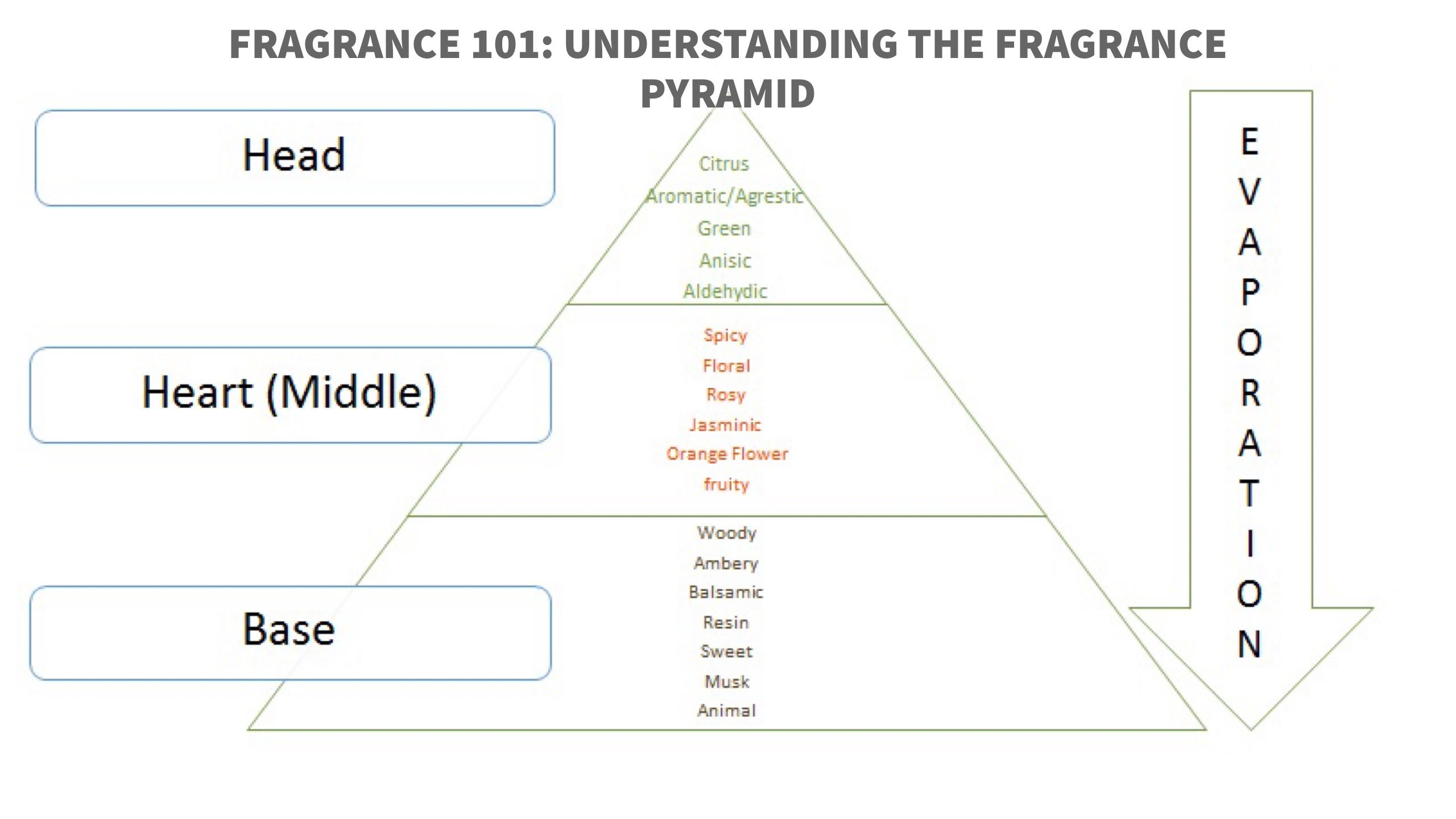Fragrance 101: Understanding The Fragrance Pyramid