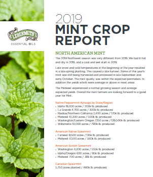Just released: Lebermuth's 2019 Mint Crop Report
